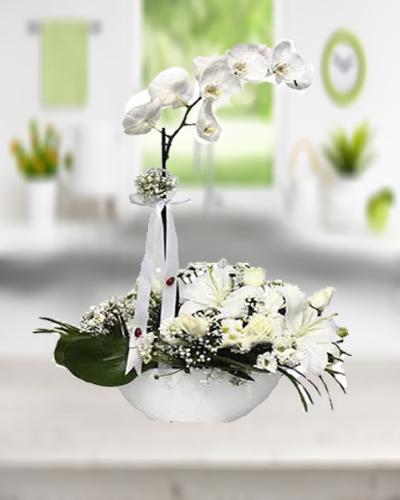 Beyaz Orkide Ve beyaz Lilyum