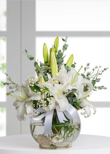 Beyazın Büyüsü - Fanusta beyaz lilyumlar