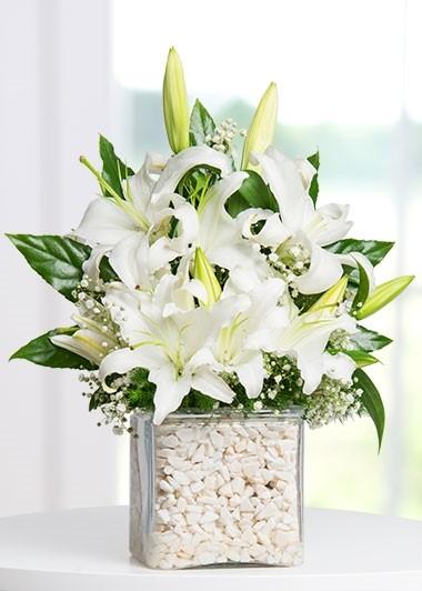 Kare Vazoda Kokulu Beyaz Lilyumlar