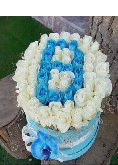 Mavi Beyaz Güllerden Baş Harf