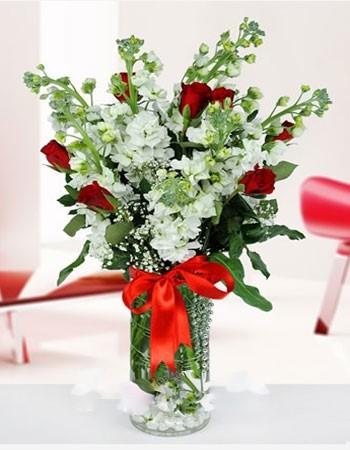 Şebboy Çiçek Kırmızı Gül